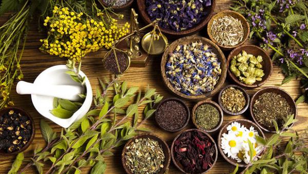 درمان بیماری های زمستانی با یاری گیاهان دارویی