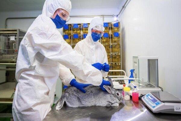 روسیه واکسن کرونای حیوانی ساخت
