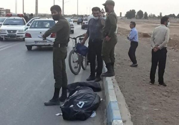 یک کشته و یک مصدوم در حمله سگ ها در شاهین شهر
